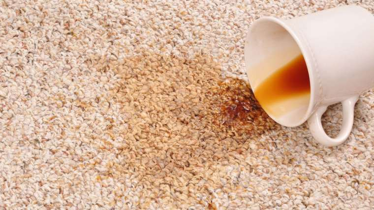 Top Carpet Stain Removal Tips